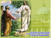 ĐÁ TẢNG XÂY DỰNG HỘI THÁNH TẠI GIA- Suy niệm Chúa Nhật XXI Thường niên A